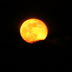 Reluctant Full Moon,Aberdeen_Feb 19_761 (Alan Longmuir.) Tags: grampian aberdeen misc sky moon reluctantfullmoon night
