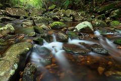 Coombadjha Creek (Harlz_) Tags: coombadjhacreek washpoolnationalpark nsw australia creek river stream water rocks rainforest forest nature scene landscape canon 24105mm 5dmarkii