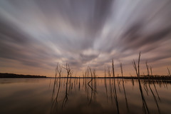 Manasquan Reservoir (Mike Ver Sprill - Milky Way Mike) Tags: manasquan reservoir lake new jersey howell landscape water reflections reflection reflect clouds cloudy branch dead trees wide angle nikon d800 1424