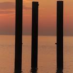 Pole Dancers thumbnail