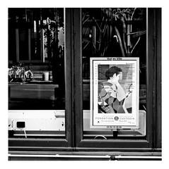 japanese whispers (japanese forms) Tags: ©japaneseforms2019 кошка ネコ ボケ味 モノクロ 日本フォーム 自転車 黒と白 bw blackwhite blackandwhite blancoynegro bokeh candid cat cats gata gato gatto japanesewhispers kat kater katje katze kot kotka monochrome neko parijs paris pussy random schwarzweis square squareformat strasenfotografie straatfotografie streetphotography thecure zwartwit