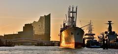 morgens an den Landungsbrücken.......... (petra.foto busy busy busy) Tags: hafen hamburg landungsbrücken germany schiffe sonnenaufgang sonnenlicht elbphilharmonie capsandiego fotopetra