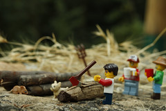 [Real World] (67) Firewood Gathering (Ricky.Silva) Tags: lego legophotography minifig legominifig comunidade0937 c0937 canon