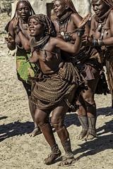 All Over The World (gecko47) Tags: himba ethnicgroup cattleherders seminomadic dance women traditional bodyadornment redochre damaraland namibia village kaokoland jewellery performance tourism kunene explore