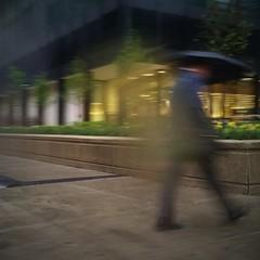 Leaving (michael.veltman) Tags: walk in the rain man umbrella chicago illinois