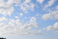 Clouds (earthdog) Tags: 2019 nikon d5600 nikond5600 18300mmf3563 monterey fishermanswharf sky cloud