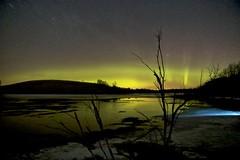 Golden aurora edit (John Andersen (JPAndersen images)) Tags: airdrie alberta aurora bighillsprings canon cold farm ie night pond reflections sky spring stars
