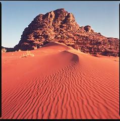 Sand dune in Wadi Rum desert (Tomas Ruginis) Tags: sand dune jordan wadi rum desert red rock mountain wild nature ripple landscape landscapephotography film 66 ektar 120 bronica sq ai zenzanon winter mediumformat