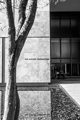 The Barnes Foundation (BrianLy) Tags: photowalk barnesfoundation philadelphia fairmount pennsylvania unitedstatesofamerica us