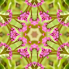 Kaleido Abstract 1920 (Lostash) Tags: art photography edited abstract kaleidoscopes patterns shapes symmetry
