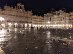 nochevieja 2018 plaza mayor portugueses (2)