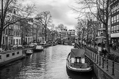 Amsterdam in b&w (julesnene) Tags: amsterdam northholland netherlands nl bw monochrome canal cruise julesnene juliasumangil travelgirljulia unesco unescoworldheritagesite destination travel canon5dmarkiv canon35mm canonef35mmf14liiusmlens canalsofamsterdam