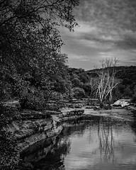Trees By The Falls on Bull Creek (Mike Schaffner) Tags: bw blackwhite blackandwhite bullcreek bullcreekdistrictpark creek falls landscape monochrome trees water wet austin texas unitedstatesofamerica us
