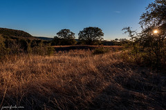 Balcones Canyonlands NWR (Jason Frels) Tags: balconescanyonlandsnationalwildliferefuge texashikes texashillcountry goldengrass goldenhour hiking hillcountrylandscape landscape outdoors sunstar sunlight texas