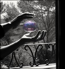 La bombolleta viatgera. (Xena,s) Tags: reflejos reflection reflexes contrallum contraluz monocromàtic monocromático monocrom bnw bw bn blancoynegro blancinegre whiteblack viñedos viňas ventana volandovoy burbuja bombolla backlighting manos mans hands