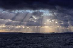 Sunrays over troubled water (Little♥Krawler) Tags: lake see nature natur germany deutschland steinhudermeer winter wind sky himmel inselwilhelmstein sun sonne