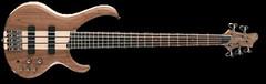 Ibanez BTB675 Electric Bass Guitar (info.devmusical) Tags: ibanez btb675 bassguitar guitar ibanezguitar electricguitar btb btb675guitar