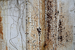 More Than Meets the Eye (Doris Burfind) Tags: rust metal decay weathered ship portdover shipyard paint peeling abandoned