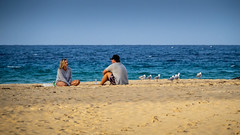 Just you, me and the birds (Michael Rawle) Tags: beach ocean water people coastal southwestrocks coast places nsw newsouthwales australia au