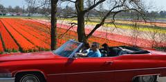 1969 Cadillac DeVille convertible (Martin van Duijn) Tags: 1969 cadillac deville convertible