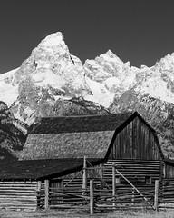 GDM_3858.jpg (GDMetzler) Tags: wyoming outside rural america farm grandtetons mountains blackandwhite bw fall snow snowcapped nikon d500 tamron