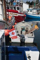Canadian Fishing Fleet (peterkelly) Tags: digital canon 6d northamerica canada newfoundlandlabrador heartscontent canadian flag boats boat outboard engine ship ships dock water harbor harbour blue