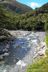 Twin Creek Falls Stream, Arthur's Pass National Park, Otira Highway, Westland, South Island, New Zealand (Black Diamond Images) Tags: twinfallsstream twincreekfalls arthurspassnationalpark otirahighway westland arthurspass southisland newzealand arthurspassnz nz nztravel nz2015 greatalpineway craigeburn arthurspasstohokitika selwyndistrict selwyn creek westcoast westcoastnz