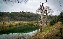 Lone trees (Naity Dhim) Tags: pedernales national parc usa austin texas river bartoncreek sel1870z