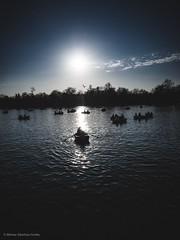 """""""Parque del Retiro""""  Luis Quiñones de Benavente: """"De Madrid al cielo, y en el cielo, un agujerito para verlo"""". (alfonsoscg) Tags: fujifilm xt20 xc1650mmf3556 ois ii ƒ50 160 mm 14000 200 agua water"""