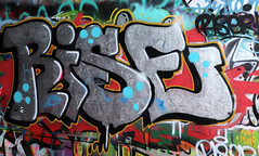 Graffiti in Amsterdam (wojofoto) Tags: amsterdam nederland netherland holland amsterdamsebrug flevopark graffiti streetart hof halloffame wojofoto wolfgangjosten rise riser throw throws throwup