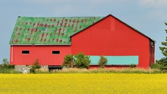 Really red double barn, near Luther Marsh, Wellington County, Ontario. (edk7) Tags: nikond3200 sigma150mm128apomacrodghsm edk7 2014 canada ontario wellingtoncounty luthermarsh farm barn crop field rural country countryside rust rusty sky architecture building oldstructure