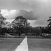 St Albans , Verulamium Park .  Zeiss Contax  1.5 50mm Sonnar  1935