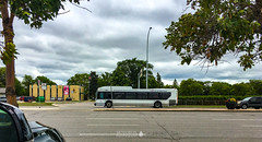 Winnipeg, Manitoba (TO416 Original) Tags: 2018 canada manitoba motoroilphotography to416 transport travel winnipeg ca attractions tourism touristattraction tourist winnipegtransit newflyer bus busstop tofouronesix to416original