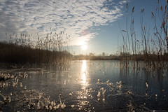 Frozen (CarolienCadoni..) Tags: sony sonyilcaa99m2 sal2470z 2470mmf28zassm clouds sunrise lake reflection frozen earlymorning drenthe netherlands