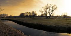 'Buitenland' - Belgium (roland_tempels) Tags: nature water belgium buitenland bornem hingene supershot sun light trees landscape abigfave