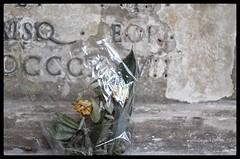 L1022429-01 (simone_raf) Tags: cimiterodellacertosa certosa graveyard cemetery bolog leica tl