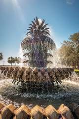 The Pineapple Fountain, at the Waterfront Park in Charleston (DigiDreamGrafix.com) Tags: charleston southcarolina green color blue colorful sky beautiful travel outdoors nature old landscape architecture building city urban scenery street coastal scenic tourism south architectural buildings streets carolinas lowcountry