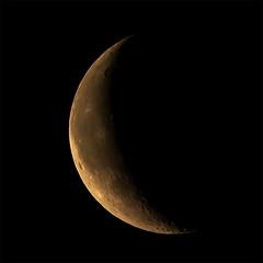 Moon 2019-03-01 (nicklucas2) Tags: astrophotography moon moon2019 moonmar2019