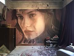 RONE | Empire-The Scarlet Room-detail (Joyflea) Tags: rone empire burnhambeeches sherbrooke