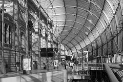 La Gare de Strasbourg (velodenz) Tags: velodenz fujifilmx100f holiday vacation vacances urlaub trip travel france alsace strasbourg railway touring company rtc lagare station eurostar architecture silkypix mono 1000views 1000 views