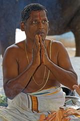 _MG_6242_DxO - Copy (carrolldeweese) Tags: ammamandapam bathing ghats cauvey tiruchirappall tamilnadu india