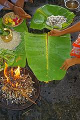 _MG_6241_DxO - Copy (carrolldeweese) Tags: ammamandapam bathing ghats cauvey tiruchirappall tamilnadu india