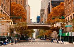 City colors in Autumn  - New York City (Andreas Komodromos) Tags: 1stavenue architecture autumn avenue bicycle building bus car city cityscape landscape manhattan newyork nyandreas nyc pedestrians people road sky skyline skyscraper street trafficlight tree urban usa