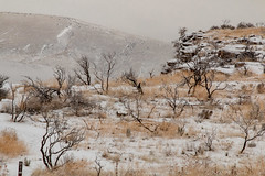 Winter Desert Trail (The.Mickster) Tags: path hike desert mountains ice frozen trail hereios cold winter idaho snow wah