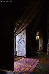 20180920 Etiopía-Bahar Dar (108) R01 (Nikobo3) Tags: áfrica etiopía bahardar urakidanemehret monasterio culturas color travel viajes nikon nikond800 d800 nikon247028 interiores