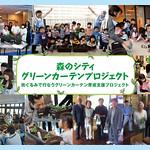 グリーンカーテン育成支援の写真