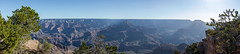 20180607 Grand Canyon National Park (39).jpg (spierson82) Tags: yakipoint southrim summer landscape canyon nationalpark grandcanyonnationalpark arizona panorama grandcanyon vacation grandcanyonvillage unitedstates us