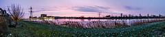 DSCF2602.jpg (amsfrank) Tags: morning winter ijburg amsterdam purple
