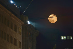 Super Snow Moon from Milan, Study #3, 2019 (strollingshuttereyes) Tags: fullmoon supermoon supersnowmoon italy milan moonrise cityscape nighttime winter architecture