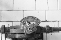 MCM | Archeologia Industriale (Marco Martucciello) Tags: marcomartucciello marcomartucciellofotografia salerno cotoniere nikonf6 archeologiaindustriale film pellicola ilfordhp5 hp5 abandoned mcm blackandwhite manifatturecotonieremeridionali